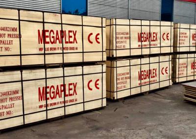 MEGAPLEX PREMIUM